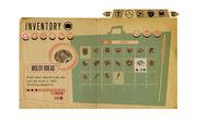 Sarah-hamilton-0000005earlydesign-inventory