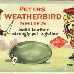 Peters Weatherbird Shoes