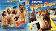 Cool Dog Full Movie