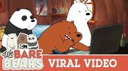 Viral Video We Bare Bears