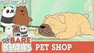 Pet Shop We Bare Bears