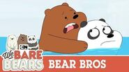 Bear Bros Compilation We Bare Bears
