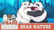 Bears Go Back To The Wild! We Bare Bears