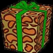 Leopardlizardbox.png