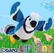 Lilkinzbluejayimage