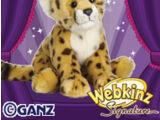 Signature Cheetah
