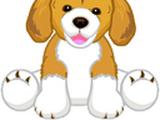 Small Signature Beagle