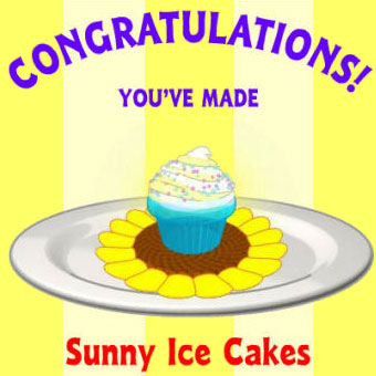 Sunny Ice Cakes