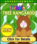 TreeKangarooAd