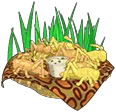 Leopardlizardfood