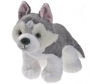 Siberian Husky Plush Pet