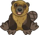 Signature Beaver