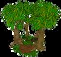 RemoteRainforest