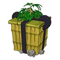 Charming panda adoption giftbox