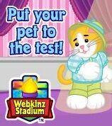 Webkinz Stadium Ad1