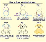 How to Draw a Golden R