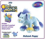 Mohawk-Puppy-POTM
