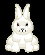Signature Arctic Hare Virtual