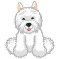 Signature West Highland Terrier