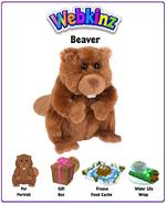 Beaver2017