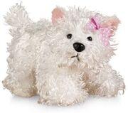 Lil'Kinz White Terrier.jpg