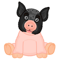 Signature Pot Bellied Pig