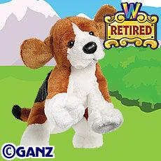 Preview beagle.jpg