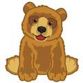 Signature Endangered Brown Bear