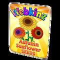 Autumn Sunflower Seeds.png