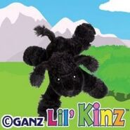 Lilkinzblackpoodlepromo