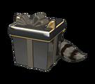 Rascally Raccoon Gift Box