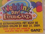 Webkinz Day Extravaganza