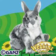 Signature English Spot Bunny Plush Pet