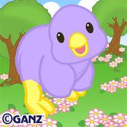 Preview purple springtime chick