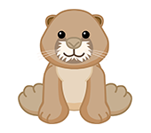 Prairie Dog.png