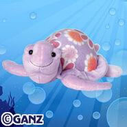 Blossom sea turtle promo