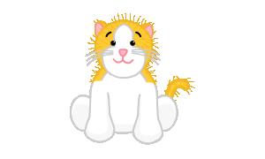 Gold & White Cat