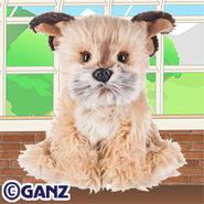 Signature Border Terrier Plush Pet