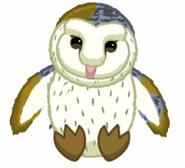Signature Barn Owl Virtual