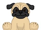 Small Signature Pug
