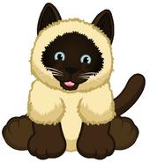 Signature Siamese Cat Virtual