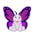 Violetwing Butterfly