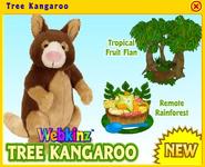 TreeKangarooAd2