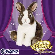 Preview signature dutch bunny