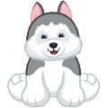 Siberian Husky Virtual