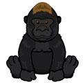 Signature Endangered Western Lowland Gorilla