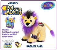 Rockerz lion pet of the month promo image