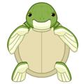 Small Signature Sea Turtle