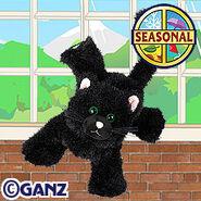 Preview black cat