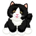 Small Signature Tuxedo Cat